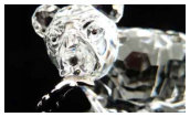 Swarovski Crystal Repair Bear with Fish